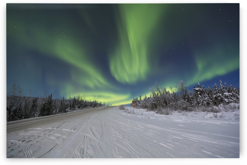Northern Lights dancing over the James Dalton Highway north of Fairbanks, Interior Alaska, Winter by PacificStock