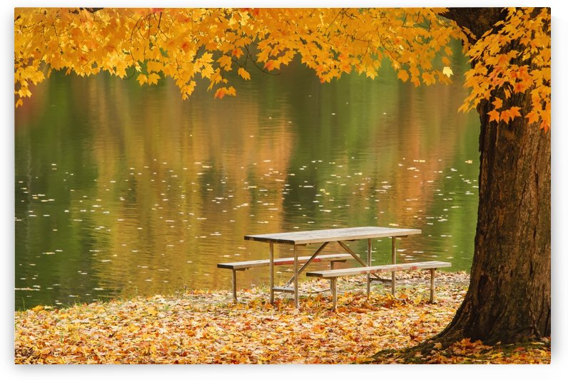 A picnic table beside a tranquil lake with golden leaves on the trees in autumn, shawnee state park;Ohio, united states of america by PacificStock