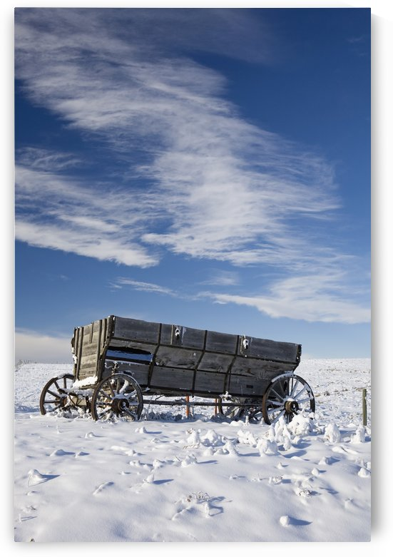 An old wooden wagon on a snow covered hillside with blue sky and clouds;Alberta canada by PacificStock