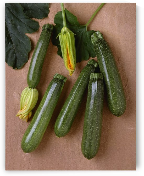 Agriculture - Green zucchini on a stone surface; variety Tigress, studio. by PacificStock