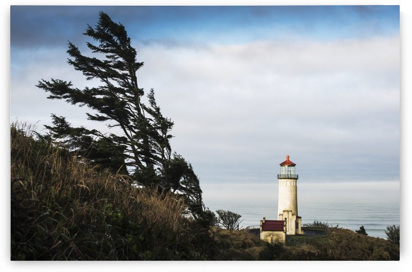 North Head Lighthouse, Cape Disappointment State Park; Ilwaco, Washington, United States of America by PacificStock
