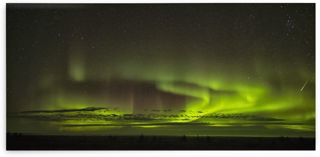 The aurora borealis and a shooting star above Hudson Bay; Manitoba, Canada by PacificStock