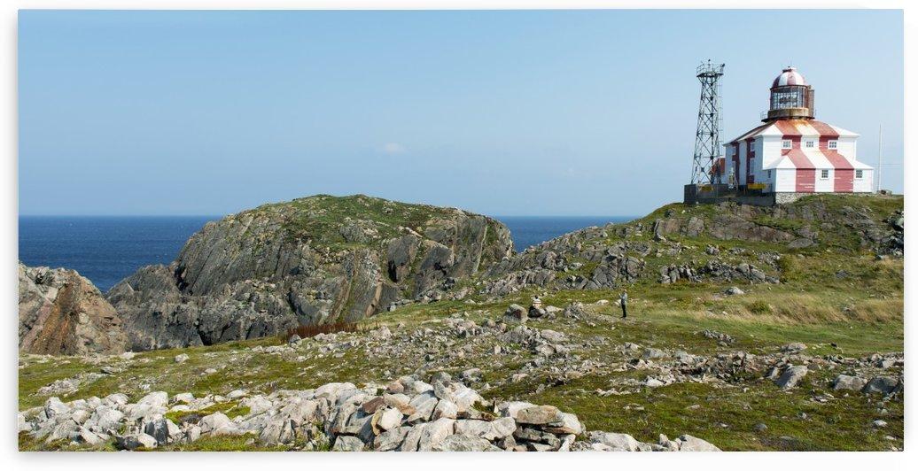 Lighthouse and building along the atlantic coast; Bonavista, Newfoundland and Labrador, Canada by PacificStock