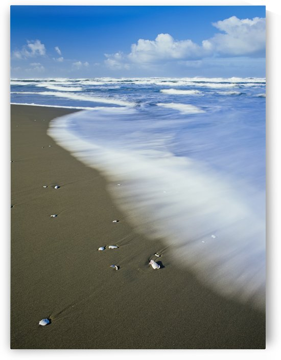 Surf washes onto Umpqua Beach; Winchester Bay, Oregon, United States of America by PacificStock