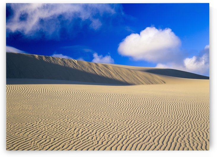 Rippled sand and dunes with blue sky and cloud; Lakeside, Oregon, United States of America by PacificStock