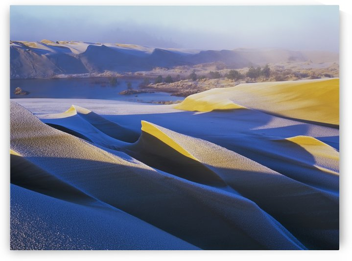 Frost and sunlight decorate the sand dunes; Lakeside, Oregon, United States of America by PacificStock