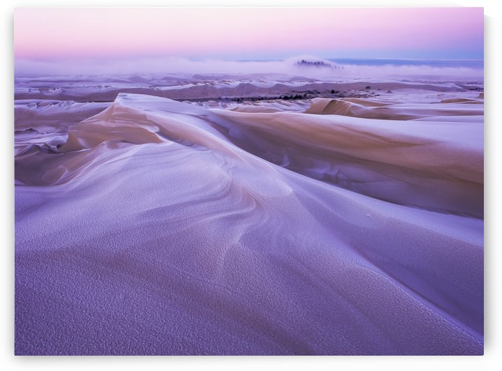 Winter carves and decorates the Umpqua Dunes, Oregon Dunes National Recreation Area; Lakeside, Oregon, United States of America by PacificStock