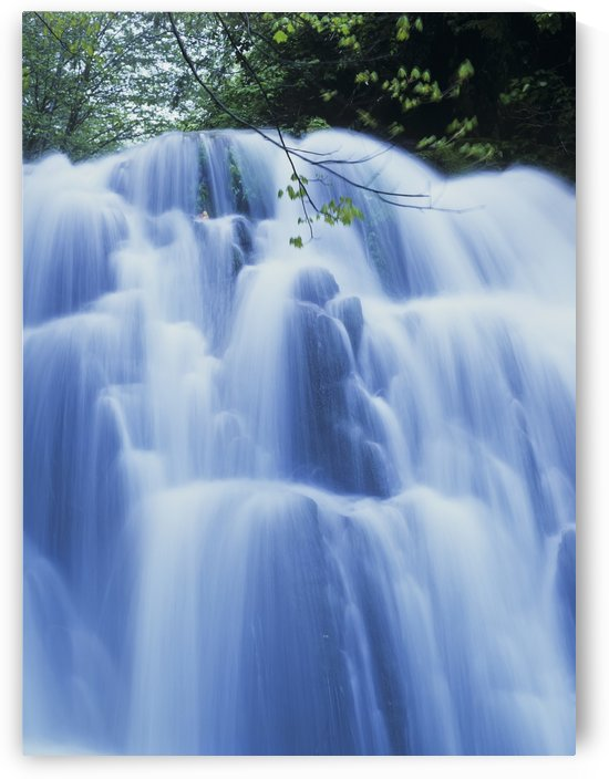 Sweet Creek waterfalls along the hiking trail; Mapleton, Oregon, United States of America by PacificStock