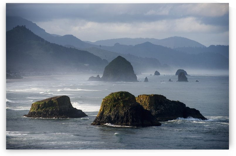 Spectacular coastal scenery is found at Ecola State Park; Cannon Beach, Oregon, United States of America by PacificStock
