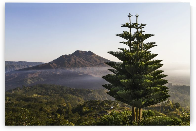Panoramic view of Mount Batur from Kintamani, Bali, Indonesia by PacificStock