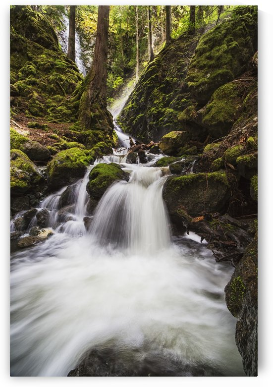 Lupin Falls, Strathcona Provincial Park; British Columbia, Canada by PacificStock
