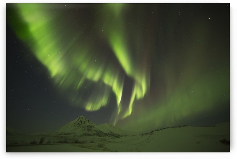 Aurora Borealis, or Northern Lights, along the Dempster Highway; Yukon, Canada by PacificStock