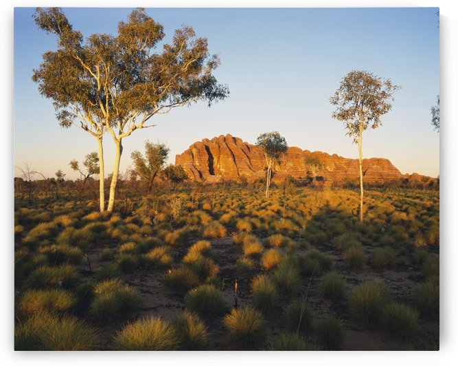 Outback Australia with rock formation in the distance; Northern Territory, Australia by PacificStock