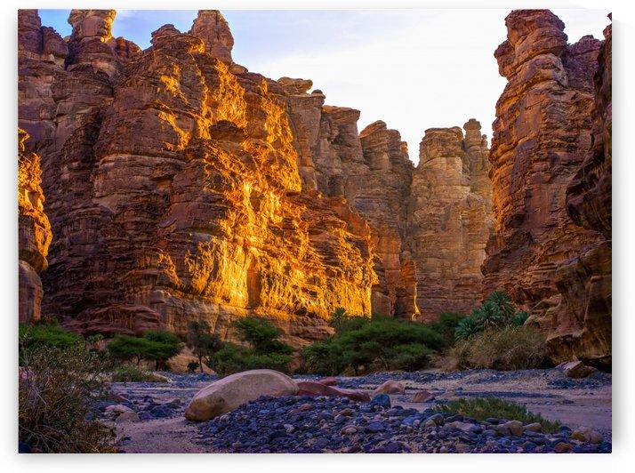 Rock cliffs and valley, near Tabuk; Saudi Arabia by PacificStock
