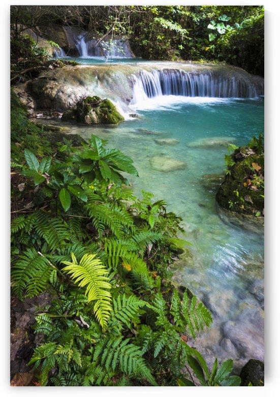 Mele Maat waterfall; Efate Island, Vanuatu by PacificStock