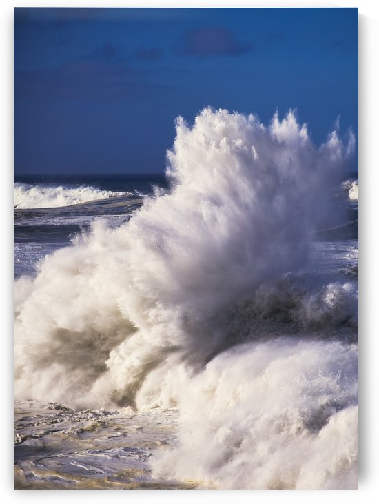 Heavy surf breaks at Shore Acres State Park; Charleston, Oregon, United States of America by PacificStock