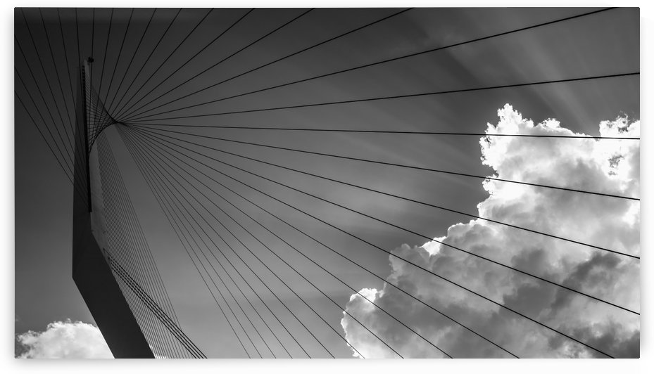 The Chords of Jerusalem Bridge in the late afternoon; Jerusalem, Israel by PacificStock