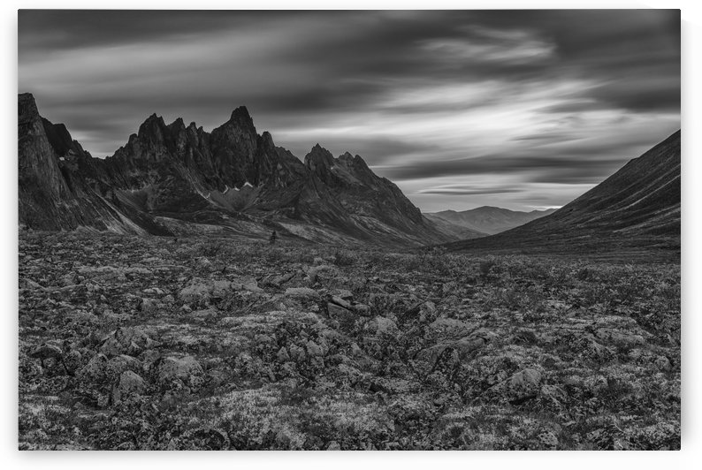 Black and white image of the Tombstone Valley in Tombstone Territorial Park, Tombstone Mountain in the distance; Yukon, Canada by PacificStock