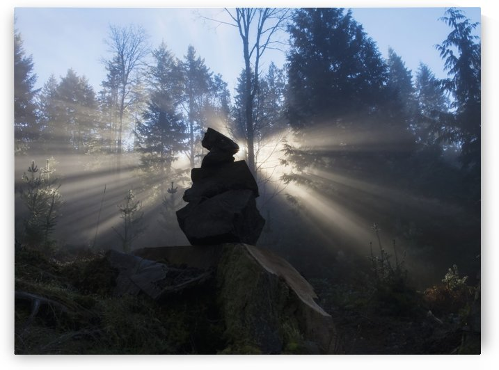 Sun shines through an ishigumi (the arrangement of stones) in fog and forest; Vancouver Island, British Columbia, Canada by PacificStock