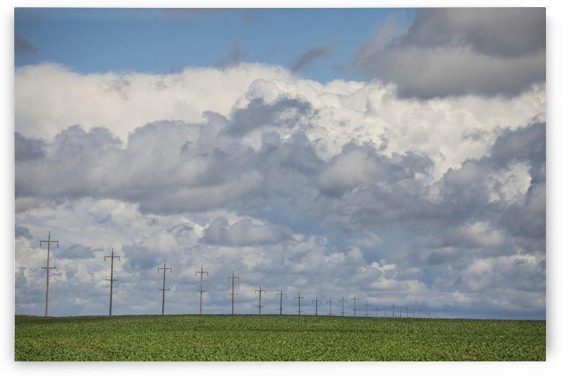 Summer on the prairies; Winnipeg, Manitoba, Canada by PacificStock