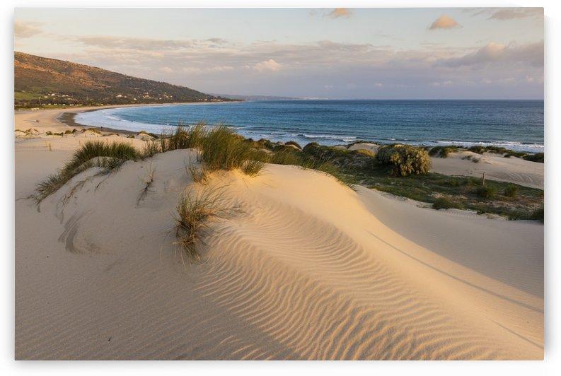 Punta Paloma sand dunes; Tarifa, Costa de la Luz, Cadiz, Andalusia, Spain by PacificStock