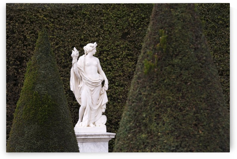 A white marble statue is shown against the green of a tall hedge in the gardens of Versailles; Paris, France by PacificStock