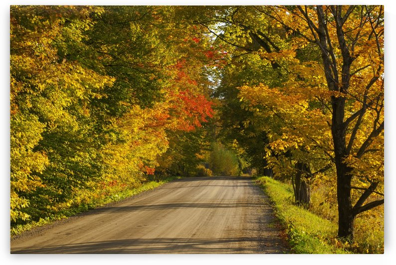 Country road in autumn; West Bolton, Quebec, Canada by PacificStock