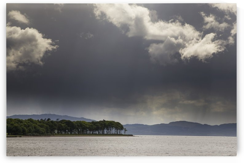 Trees and mountains along the coastline under storm clouds; Otter Ferry, Scotland by PacificStock