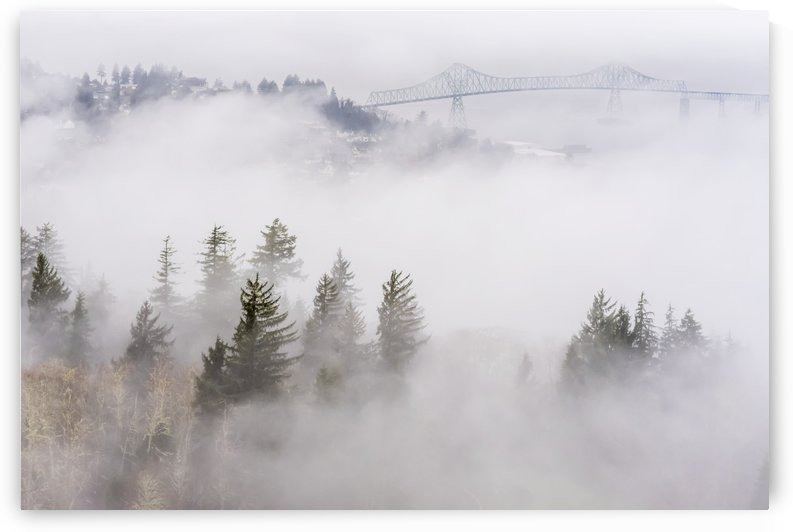 Fog blankets the hills along the Columbia River; Astoria, Oregon, United States of America by PacificStock