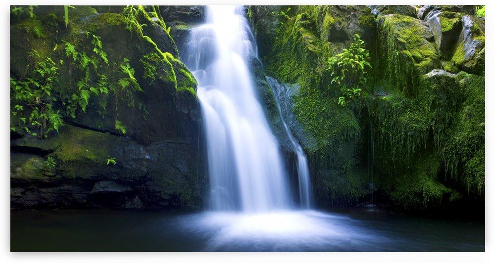 Beautiful Lush Waterfall by PacificStock