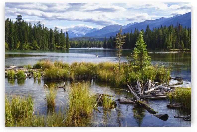 Beauvert Lake, Jasper National Park; Jasper, Alberta, Canada by PacificStock