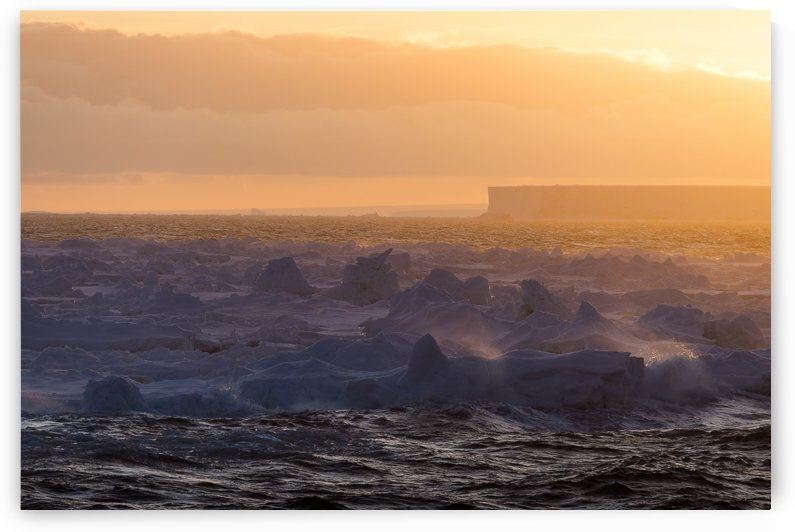 Tabular iceberg at sunrise; Antarctica by PacificStock