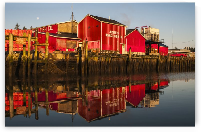 The fishing plant reflected in the Columbia River at the port of Ilwaco; Ilwaco, Washington, United States of America by PacificStock