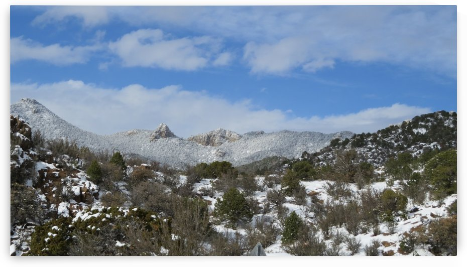 Snow in the Sandia Mountains 6VP by Vicki Polin