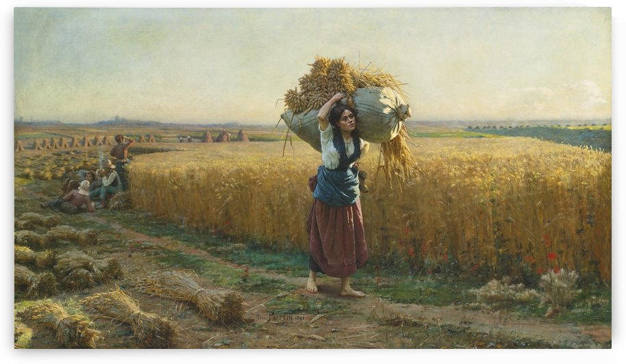 The harvest by Cesar Pattein