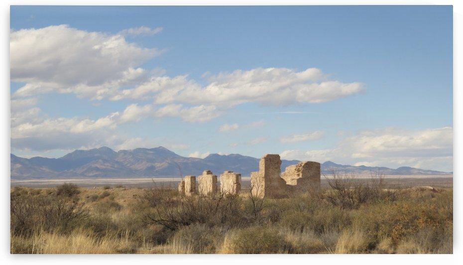 Ruins of Fort Craig 5 by Vicki Polin