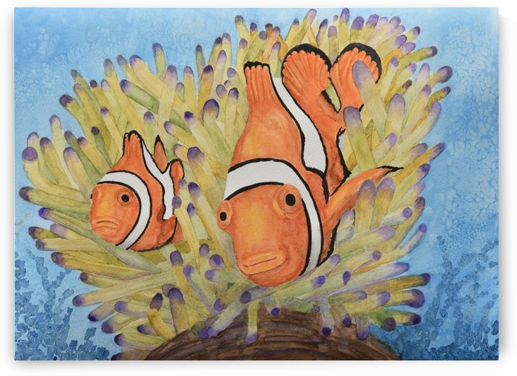 Clownfish by Linda Brody