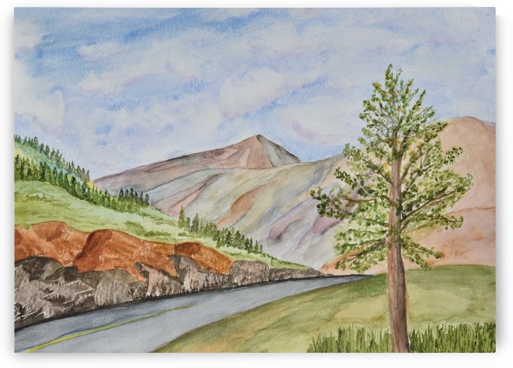 At the Side of the Road by Linda Brody