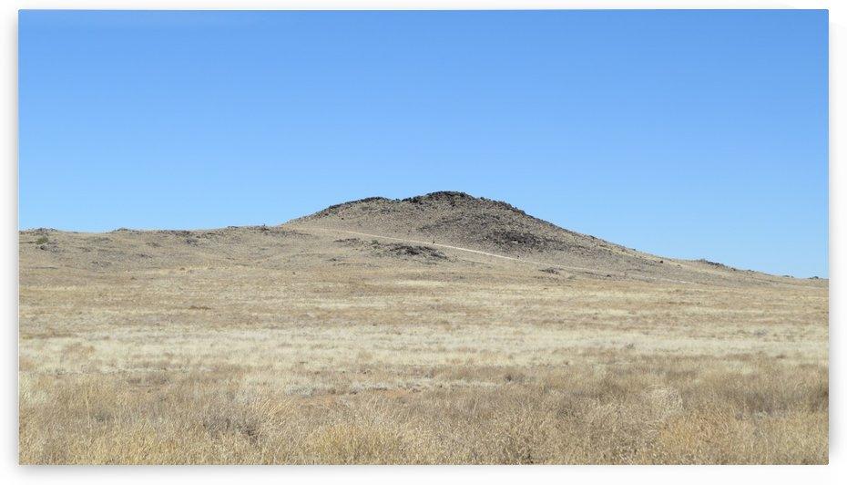 Volcanoes of Albuquerque VP6 by Vicki Polin