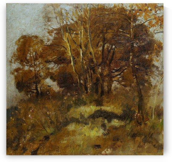 A tree in full autumn by Eugen Bracht