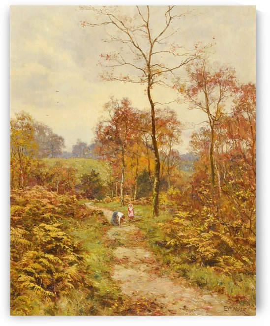 A walk in the forrest by Edward Wilkins Waite
