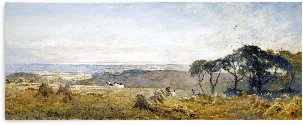 Surrey hills by Edward Wilkins Waite