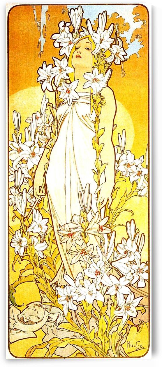 Lily by Alphonse Mucha