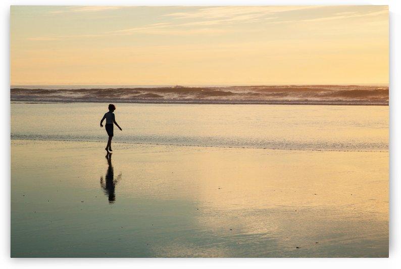 Beach Boy by John Foster