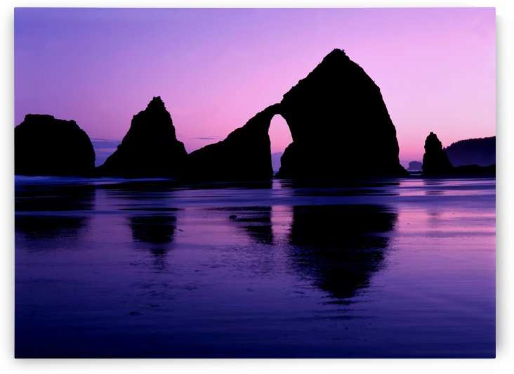 Arch at Oceanside by John Foster