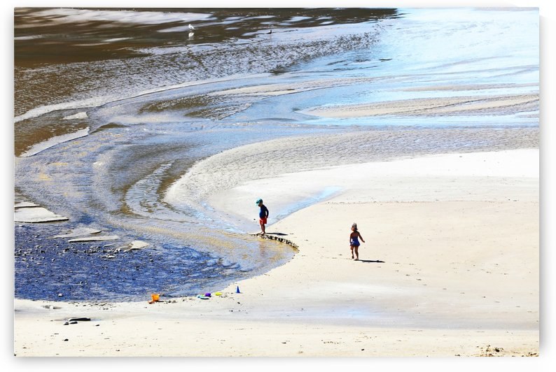 Children on the Shore by John Foster