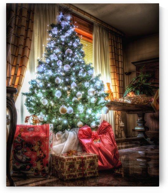 Christmas Tree by Andrea Spallanzani