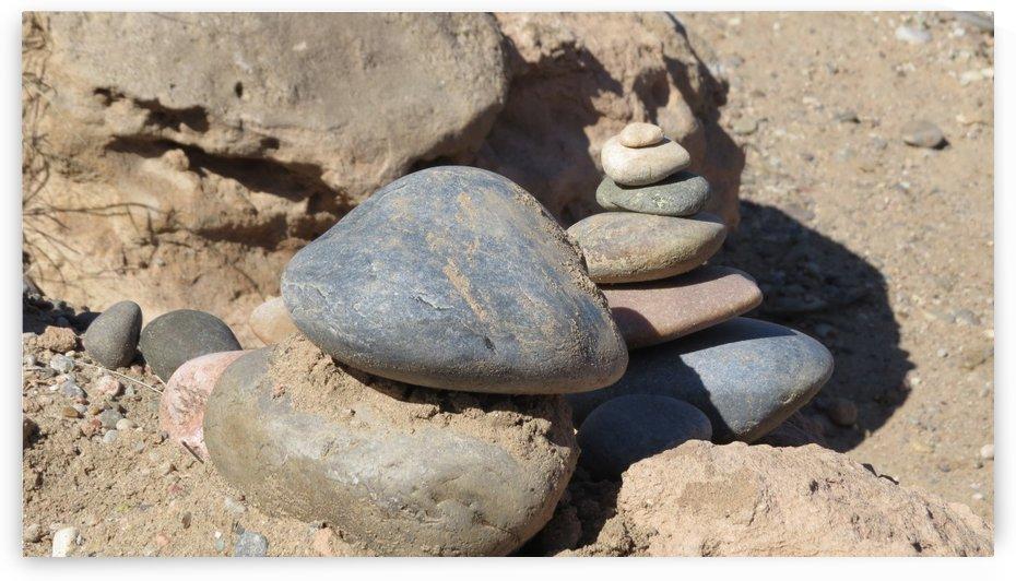 Rio Grande Rocks VP3 by Vicki Polin