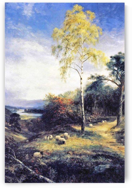 A Lonely Birch by John MacWhirter