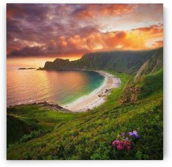 scenery 1 by Castell Maye